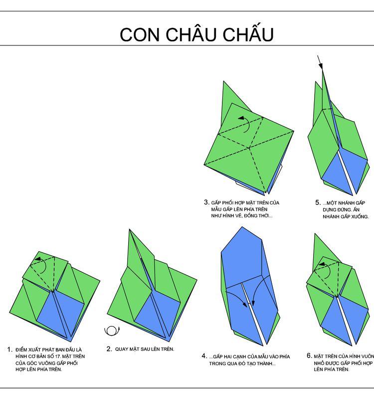 Concaocao2